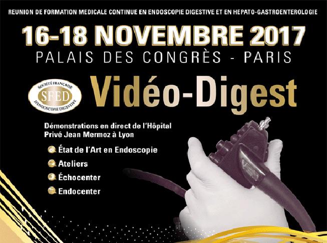 Vidéo Digest 2017