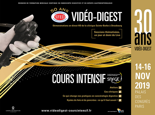 Vidéo-Digest – Cours intensif 2019